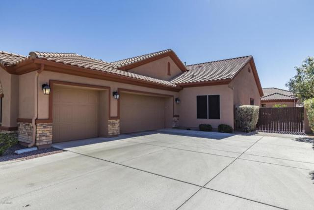 26793 N 92ND Drive, Peoria, AZ 85383 (MLS #5774327) :: The Daniel Montez Real Estate Group