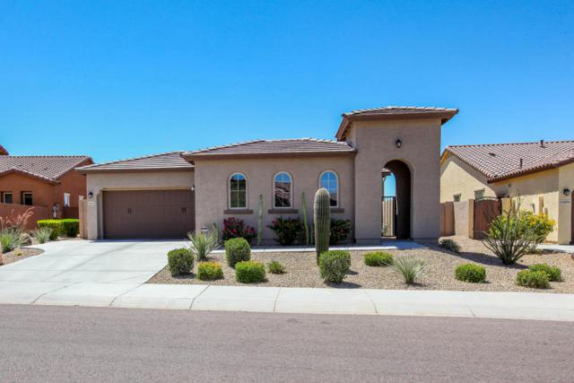 14612 S 179TH Avenue, Goodyear, AZ 85338 (MLS #5774335) :: The Daniel Montez Real Estate Group