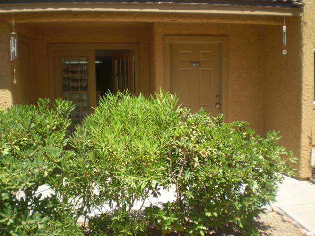 3511 E Baseline Road #1013, Phoenix, AZ 85042 (MLS #5774336) :: My Home Group