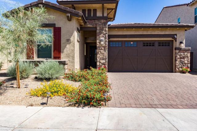 220 W Fellars Drive, Phoenix, AZ 85023 (MLS #5774349) :: Essential Properties, Inc.