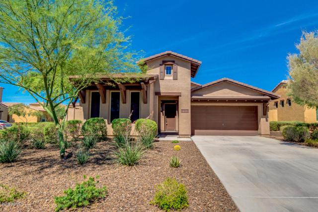 31302 N 137TH Avenue, Peoria, AZ 85383 (MLS #5774367) :: My Home Group