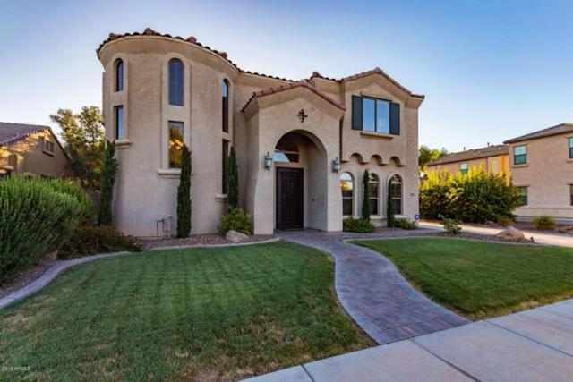 4790 S Anvil Place, Chandler, AZ 85249 (MLS #5774436) :: Lifestyle Partners Team