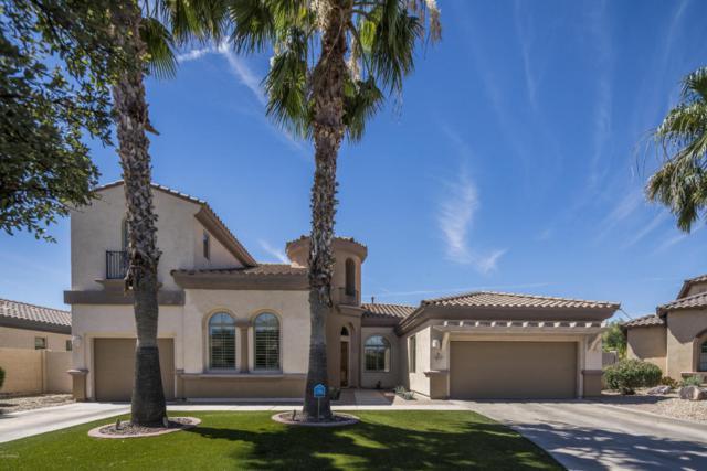 813 W Azure Lane, Litchfield Park, AZ 85340 (MLS #5774448) :: Occasio Realty