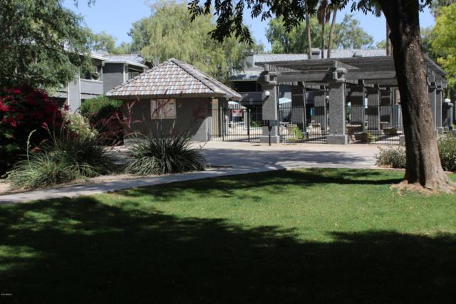 255 S Kyrene Road #236, Chandler, AZ 85226 (MLS #5774466) :: My Home Group