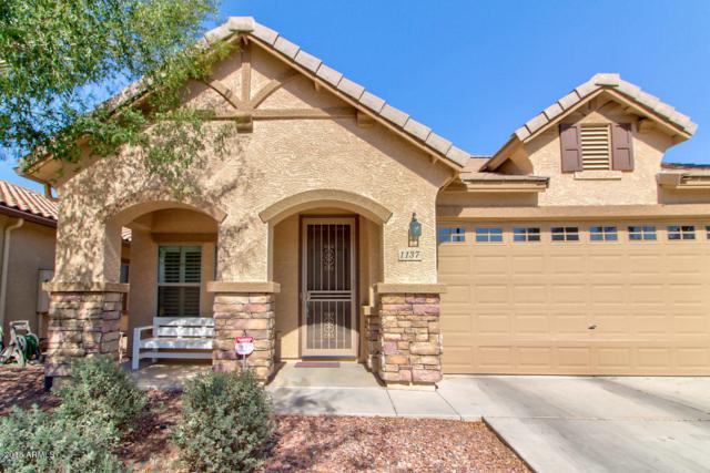 1137 S Pheasant Drive Lot 151, Gilbert, AZ 85296 (MLS #5774517) :: My Home Group