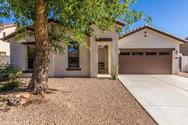 1283 E Indigo Street, Gilbert, AZ 85298 (MLS #5774521) :: Lux Home Group at  Keller Williams Realty Phoenix