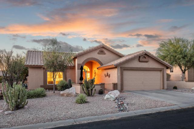 8998 E Brittle Bush Road, Gold Canyon, AZ 85118 (MLS #5774534) :: The Everest Team at My Home Group