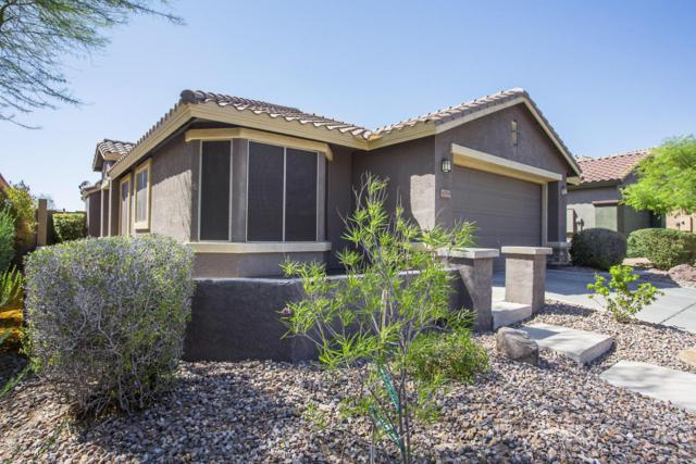 40954 N Wild West Trail, Anthem, AZ 85086 (MLS #5774586) :: My Home Group