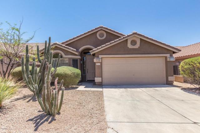 10217 E Karen Drive, Scottsdale, AZ 85255 (MLS #5774589) :: Yost Realty Group at RE/MAX Casa Grande