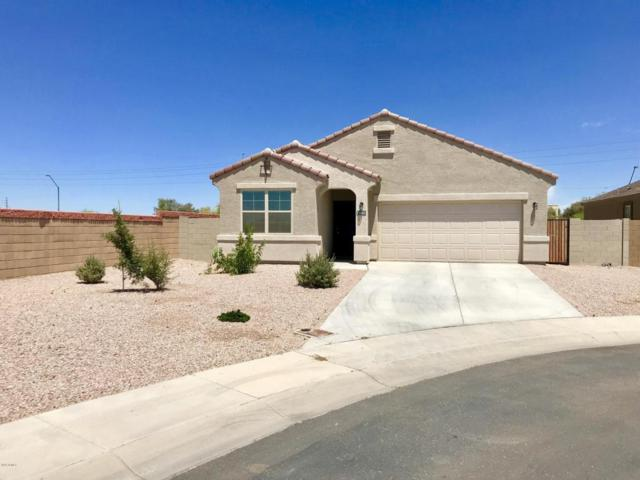6265 S 251ST Drive, Buckeye, AZ 85326 (MLS #5774601) :: Lux Home Group at  Keller Williams Realty Phoenix