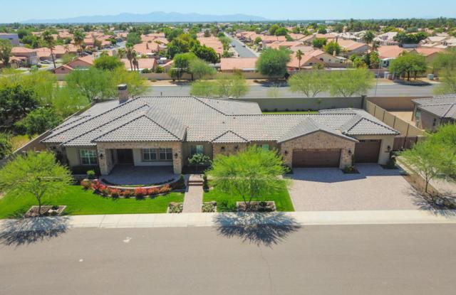 13960 N 74TH Lane, Peoria, AZ 85381 (MLS #5774611) :: Occasio Realty