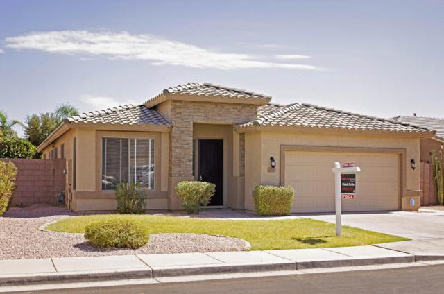 2051 E Augusta Avenue, Chandler, AZ 85249 (MLS #5774615) :: My Home Group