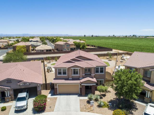 38139 N Longhorn Street, San Tan Valley, AZ 85140 (MLS #5774655) :: My Home Group