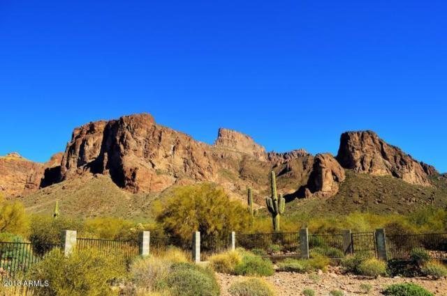 1497 N Holmes Road, Apache Junction, AZ 85119 (MLS #5774698) :: Brett Tanner Home Selling Team