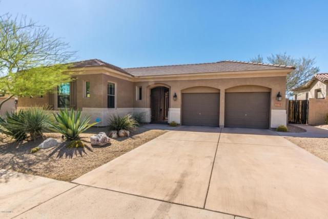 2714 W Via Vista Drive, Phoenix, AZ 85086 (MLS #5774726) :: Essential Properties, Inc.