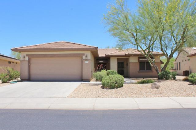 21331 N Olmsted Point Lane, Surprise, AZ 85387 (MLS #5774773) :: The W Group