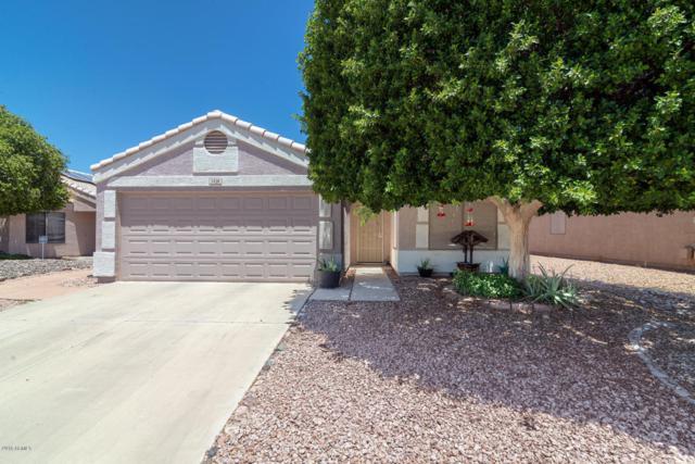 1428 W Mesquite Avenue, Apache Junction, AZ 85120 (MLS #5774788) :: The Jesse Herfel Real Estate Group