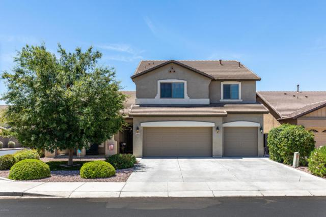 18003 W Westpark Boulevard, Surprise, AZ 85388 (MLS #5774815) :: Lux Home Group at  Keller Williams Realty Phoenix