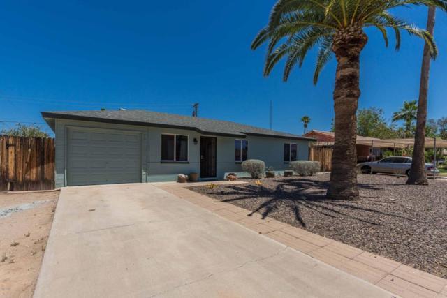 1618 W Cheryl Drive, Phoenix, AZ 85021 (MLS #5774890) :: Essential Properties, Inc.