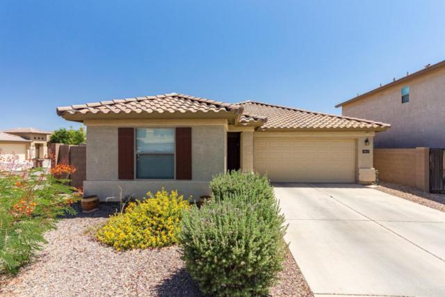 3611 E Velasco Street, San Tan Valley, AZ 85140 (MLS #5774919) :: My Home Group
