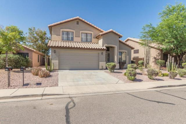 2026 E Patrick Lane, Phoenix, AZ 85024 (MLS #5774926) :: Lifestyle Partners Team