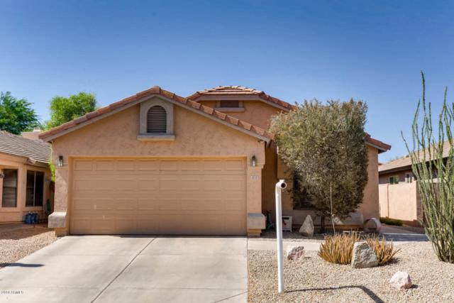4838 E Abraham Lane, Phoenix, AZ 85054 (MLS #5774990) :: Arizona Best Real Estate