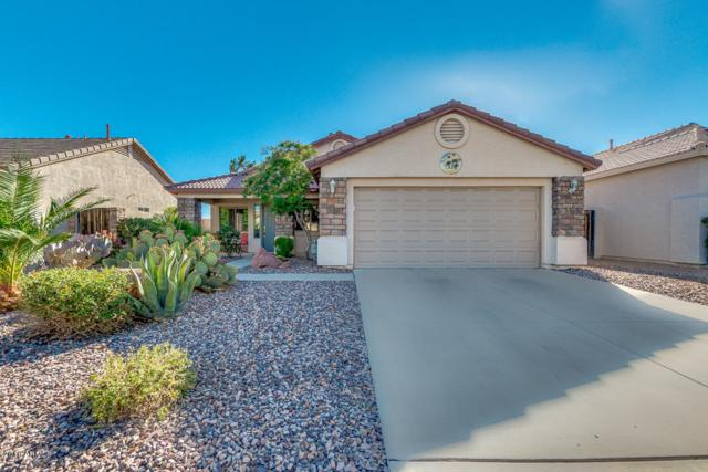 30484 N Royal Oak Way, San Tan Valley, AZ 85143 (MLS #5775048) :: My Home Group