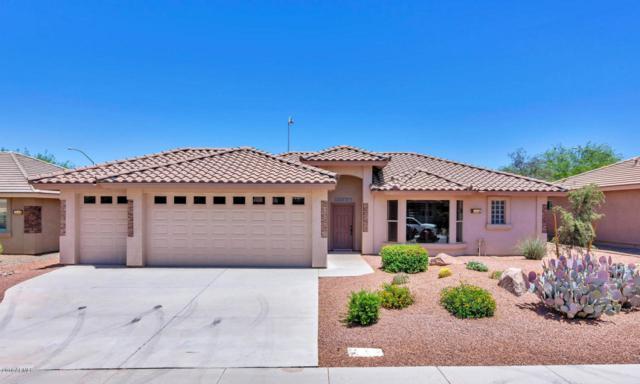 11246 E Olla Avenue, Mesa, AZ 85212 (MLS #5775068) :: Lifestyle Partners Team