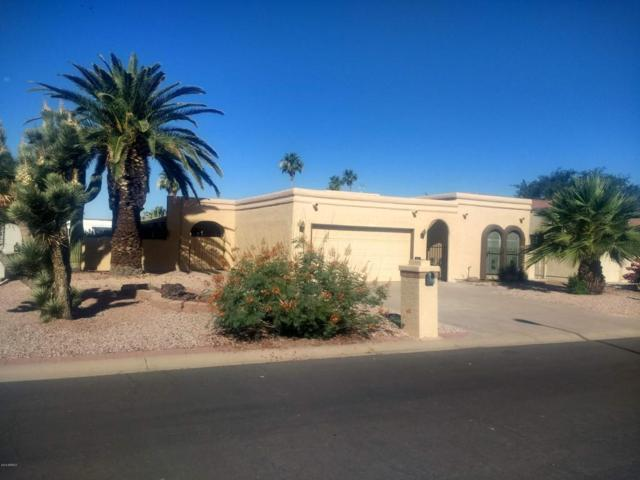 9315 E Olive Lane N, Sun Lakes, AZ 85248 (MLS #5775091) :: Kepple Real Estate Group