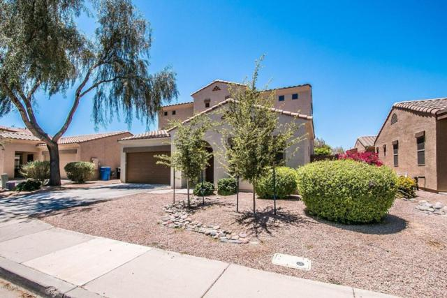 6346 S Sinova Avenue, Gilbert, AZ 85298 (MLS #5775101) :: Kortright Group - West USA Realty