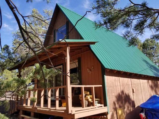 3398 Buckhorn Bend, Overgaard, AZ 85933 (MLS #5775151) :: The Daniel Montez Real Estate Group