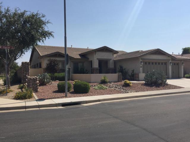 3655 E Glacier Place, Chandler, AZ 85249 (MLS #5775177) :: Kepple Real Estate Group