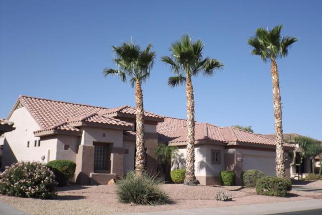 16291 W Willow Creek Lane, Surprise, AZ 85374 (MLS #5775265) :: The Everest Team at My Home Group