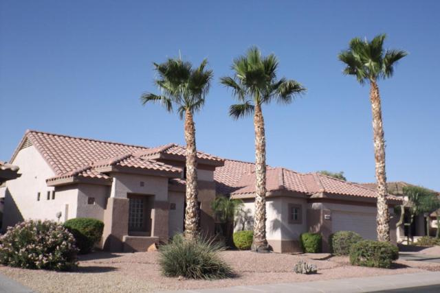 16291 W Willow Creek Lane, Surprise, AZ 85374 (MLS #5775265) :: Kortright Group - West USA Realty