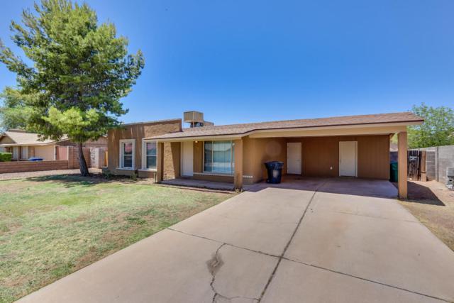 1014 S 33RD Place, Mesa, AZ 85204 (MLS #5775516) :: Essential Properties, Inc.