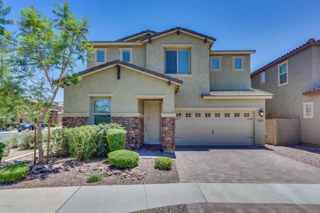 3491 E Indigo Street, Gilbert, AZ 85298 (MLS #5775569) :: My Home Group