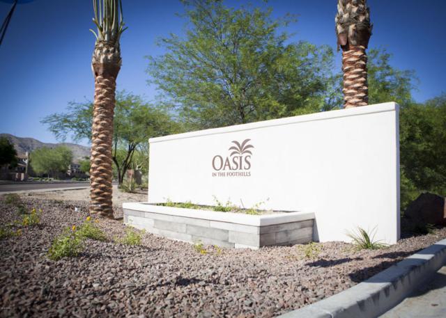 16444 S 10TH Street, Phoenix, AZ 85048 (MLS #5775653) :: Conway Real Estate