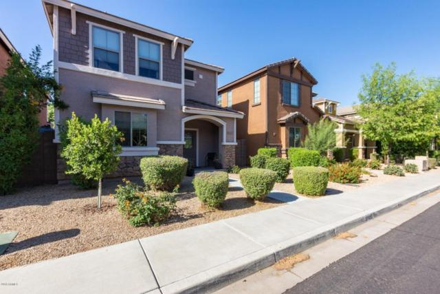 3765 E Kerry Lane, Phoenix, AZ 85050 (MLS #5775673) :: Essential Properties, Inc.