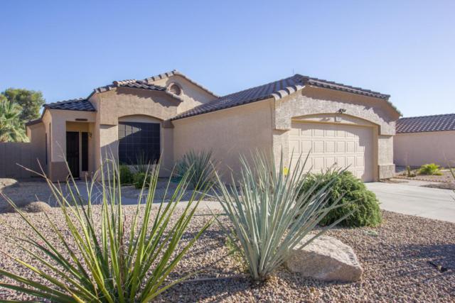1961 W Tracy Lane, Phoenix, AZ 85023 (MLS #5775717) :: Essential Properties, Inc.
