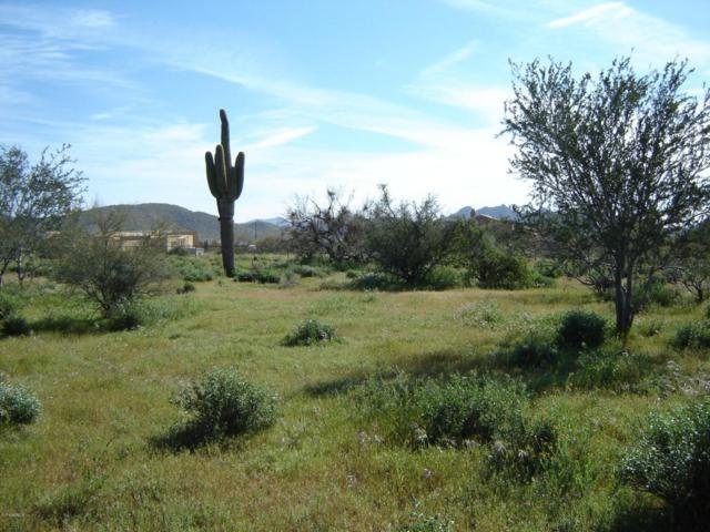38217 N 7TH Street, Phoenix, AZ 85086 (MLS #5775741) :: The Daniel Montez Real Estate Group
