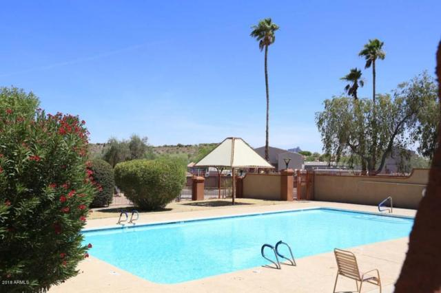 14247 N Boxwood Lane, Fountain Hills, AZ 85268 (MLS #5775746) :: My Home Group