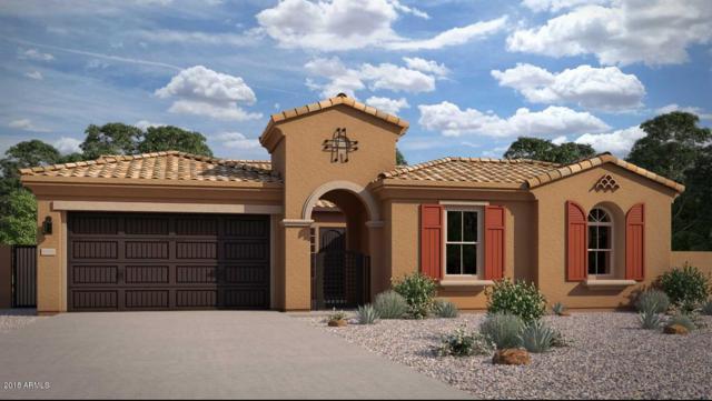 1320 N 102ND Street, Mesa, AZ 85207 (MLS #5775775) :: Occasio Realty