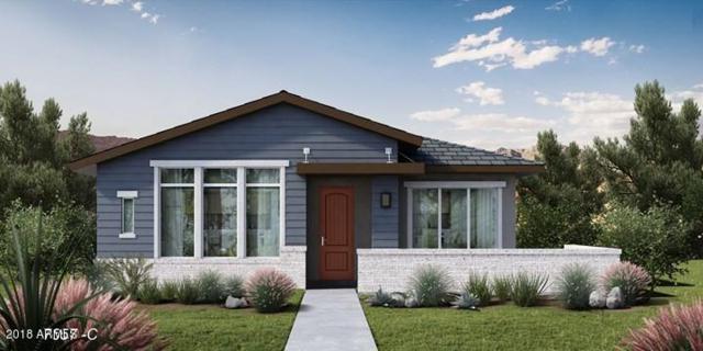 20768 W Windsor Drive, Buckeye, AZ 85396 (MLS #5775788) :: Conway Real Estate