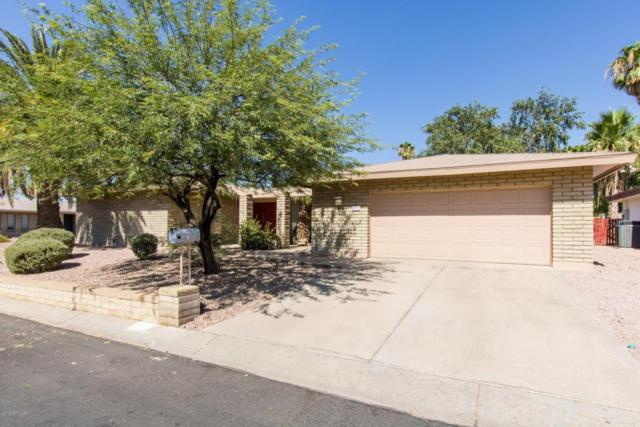 9219 N 28TH Street, Phoenix, AZ 85028 (MLS #5775817) :: My Home Group