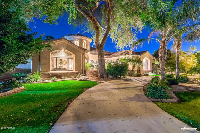 3733 E Olive Avenue, Gilbert, AZ 85234 (MLS #5775859) :: Yost Realty Group at RE/MAX Casa Grande