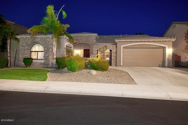 3313 E Powell Place, Chandler, AZ 85249 (MLS #5775862) :: My Home Group