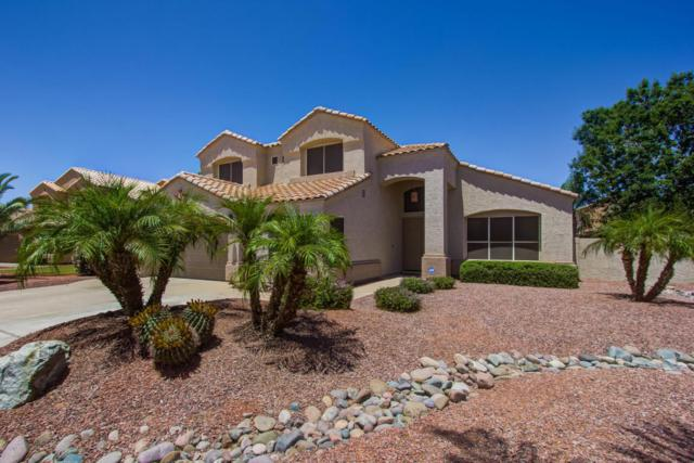 9540 E Jan Avenue, Mesa, AZ 85209 (MLS #5775962) :: The Everest Team at My Home Group