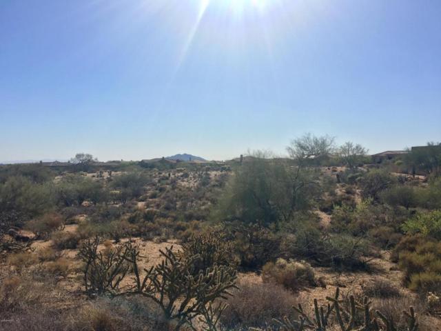 36988 N Boulder View Drive, Scottsdale, AZ 85262 (MLS #5776036) :: Brett Tanner Home Selling Team