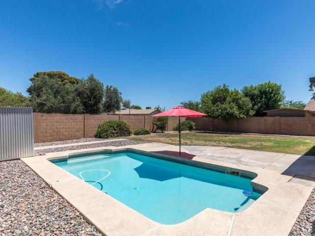 920 W Los Lagos Vista Avenue, Mesa, AZ 85210 (MLS #5776141) :: Group 46:10
