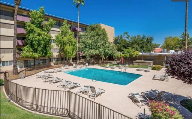 351 E Thomas Road D401, Phoenix, AZ 85012 (MLS #5776200) :: My Home Group